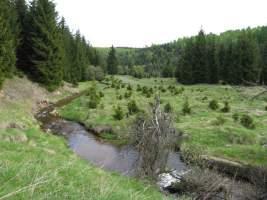 Telčský potok